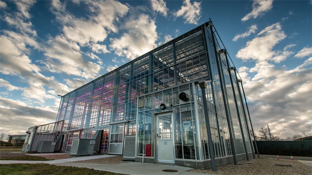 The Plant Phenotyping and Soil Health Facility in Cranfield. Credit: The Agri-EPI Centre.