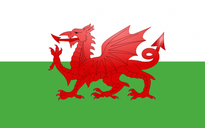 Welsh Government support for Microbusinesses