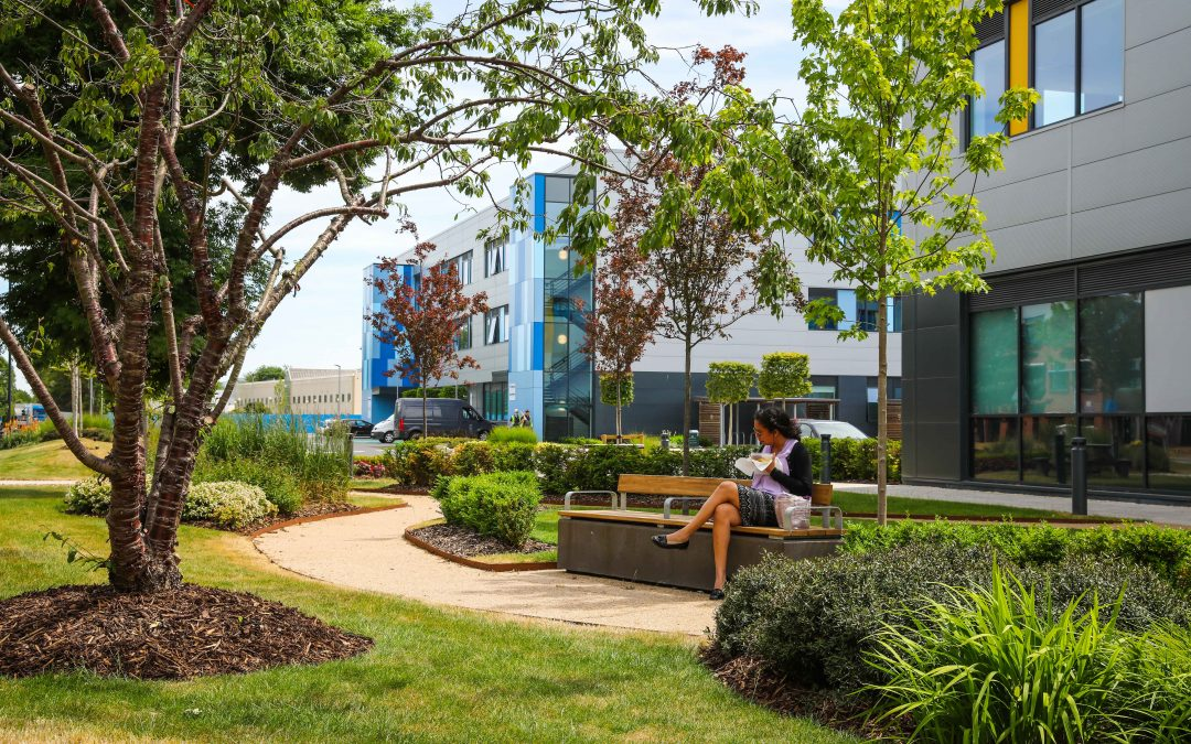 Access to Green Space and Workplace Wellbeing