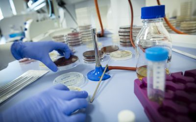 Pioneering drug discovery firm Amprologix moves to Plymouth Science Park